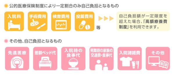 AIG富士生命「医療ベスト・ゴールド」スクリーンショット 2015-12-25 12.03.20